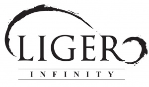 Liger Infinity Sdn Bhd